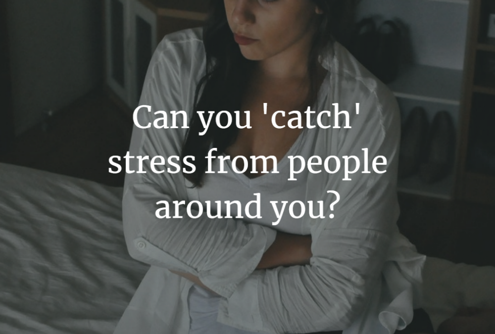 Can you 'catch' stress from people around you?