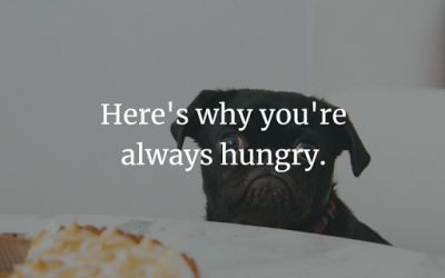 Here's why you're always hungry.